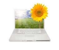 Silberner Computer-Laptop getrennt mit Sonnenblume Stockbilder