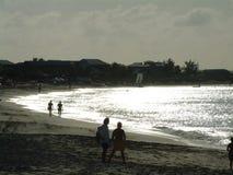 Silberner Ozean Stockbilder