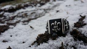 Silberner Ring Lizenzfreie Stockbilder