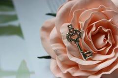 Silberner Schlüssel der Weinlese auf rosafarbener Knospe, Weinleseretrostil, selektiver Fokus lizenzfreie stockfotografie