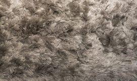 Silberner Shagpile-Teppich Lizenzfreies Stockbild