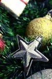Silberner Weihnachtsstern lizenzfreie stockbilder