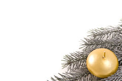 Silberner Weihnachtszweig Lizenzfreies Stockbild