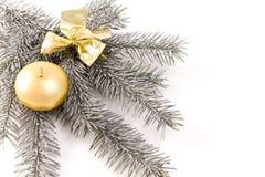 Silberner Weihnachtszweig Stockbilder