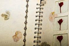 Silbernes Armband Stockfoto