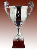 Silbernes Cup Lizenzfreies Stockbild
