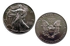 Silbernes Eagle Lizenzfreie Stockfotografie