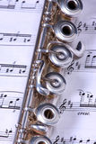 Silbernes Flöteinstrument Lizenzfreie Stockfotografie