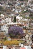 Silbernes Kapital - Taxco, Mexiko Stockbilder