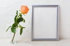 Silbernes Rahmenmodell mit Orangeaprikose stieg in Glasvase Lizenzfreie Stockfotografie