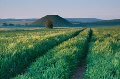 Silbury Hill Stock Photo