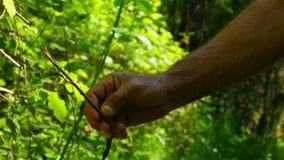 silcan dilkisen завод травы, нетрадиционная медицина, рак желудка видеоматериал
