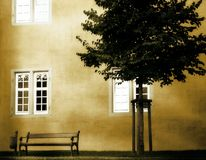 Silence. Photo of a romantic place (bench and tree royalty free stock images