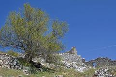 Silence among the ancient ruins Stock Photo