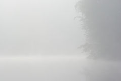 Silence in fog Stock Photography