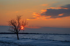 Silence over the plains frostily in the December dusk. Beautiful plains covered with frozen snow, illuminated with sunset Royalty Free Stock Image
