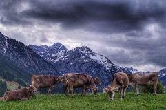 Silence before the storm, Mittelberg royalty free stock image