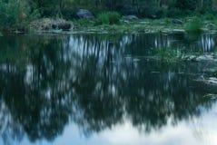 Silencio del río Imagen de archivo libre de regalías