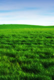 Silent day in the countryside - blue and green Stock Photography