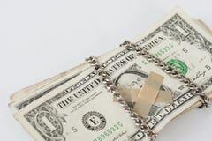 Silent dollar. Royalty Free Stock Photos