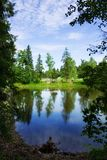 Silent lake. Coast of wood lake on a background of the blue sky with clouds Royalty Free Stock Image