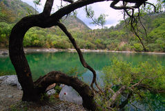 The Silent Lake Stock Photography