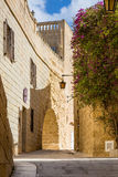 Silent and magical alley in Mdina, Malta Royalty Free Stock Photo