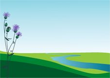 Silent morning. Flower cornflower violet. Meadow. River royalty free illustration
