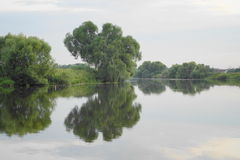 Silent smooth surface of water in the river Royalty Free Stock Photo