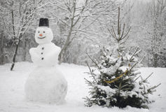 Silent snowman Stock Images