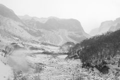Silent Valley. A silent Valley in Changbai Mountain, China in winter Royalty Free Stock Photos