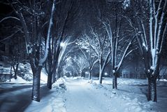 Silent walkway under snow Royalty Free Stock Photo