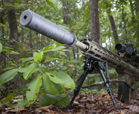 Silent weapon. Semi automatic firearm with a suppressor that is in the woods Stock Photo