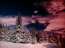 Silent winter sunset stock images