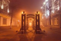 Silentomyr bij mist Stock Foto