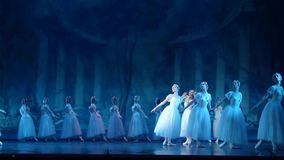 Silfos del ballet clásico almacen de video