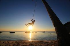 Silhoeuette de um menino aciganado do mar que pendura de uma árvore de coco Imagem de Stock