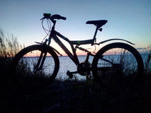 Silhouet a bicycle against the background of grass and sunset over the river or sea. Water, forest Royalty Free Stock Image