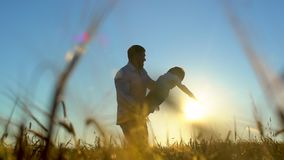Silhouet die van vader en zoons het spelen, van zonsondergang op tarwegebied genieten in aard op de zomerdag Het gelukkige Lopen  stock videobeelden