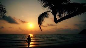 Silhouet onbezorgd sexy meisje die met gelooide huid de zomer van vakantie op tropisch strand op mooie zonsondergang als achtergr stock videobeelden