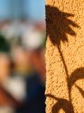 Silhouet, schaduw van kleine zonnebloem op de muur Royalty-vrije Stock Foto