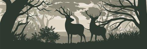 Silhouet Twee wild hertenrendier in een bos stock illustratie
