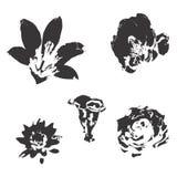 Silhouet van bloemen Royalty-vrije Stock Foto