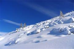 Silhouet van bomen in de winter op een achtergrond van blauwe hemel Stock Foto's