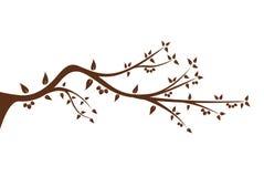 Silhouet van boomtak voor uw decoratie Stock Fotografie