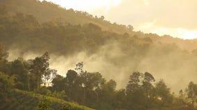 Silhouet van de berg tijdens het regenen in moessonseizoen van het tropische regenwoud stock video