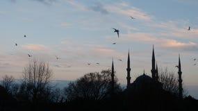 Silhouet van de Blauwe Moskee Stock Fotografie