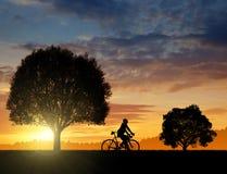 Silhouet van de fietser Royalty-vrije Stock Afbeeldingen