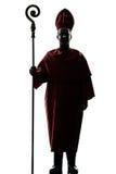 Silhouet van de mensen het hoofdbischop stock fotografie