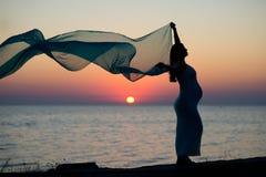 Silhouet van de zwangere vrouw stock foto